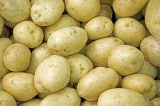 Free Raw White Potatoes Stock Images - 15202974
