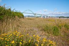 Free Newport Bridge Royalty Free Stock Photo - 15203535