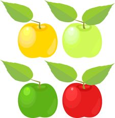 Free Apples With Leave Stock Photo - 15204530