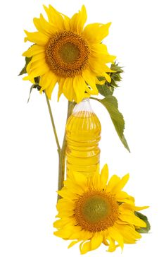 Free Sunflower Oil And Sunflower Stock Images - 15205284