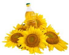Sunflower Oil And Sunflower Stock Images