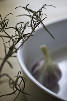 Free Rosemary Branch And Clove Of Garlic Stock Photography - 15206782