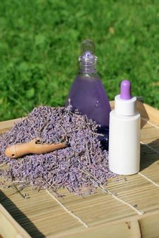 Free Lavender Essential Oil And Gel Royalty Free Stock Photo - 15208805