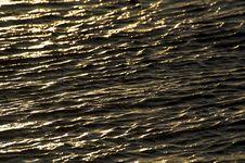 Water Ripple Royalty Free Stock Image