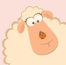 Smiling Sheep With Ladybird Stock Photos