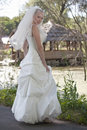 Free Bride Outdoor Royalty Free Stock Photography - 15217177