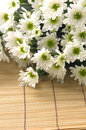 Free Daisy Bouquet Royalty Free Stock Images - 15219329