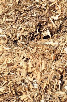 Sawmill Waste Stock Image