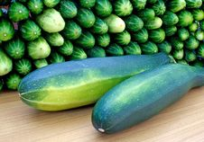 Free Oblong Marrow And Green Cucumbe Stock Images - 15214054