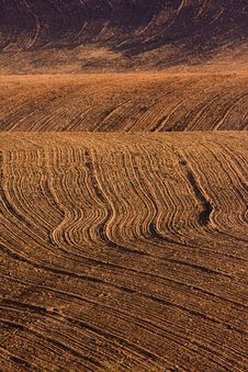 Free Ploughed Field Royalty Free Stock Photo - 15214355