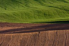 Free Ploughed Field Royalty Free Stock Photo - 15214535