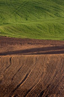 Free Ploughed Field Stock Photography - 15214602