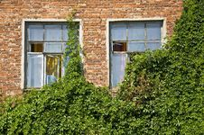 Free Windows In Old Brick Wall Royalty Free Stock Photos - 15215058