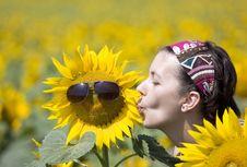 Free Summer Stock Image - 15215611