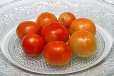 Free Juicy Tomatoes Stock Images - 15216184