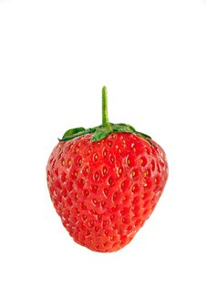 Free Single Strawberry Royalty Free Stock Images - 15216219
