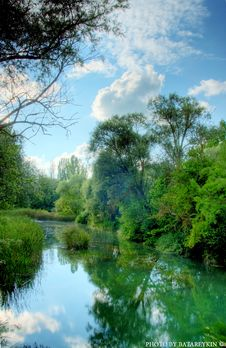 Free Summer Forest Landscape Royalty Free Stock Photos - 15216698