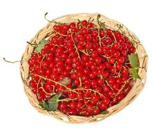 Free Red  Currants Royalty Free Stock Images - 15217119