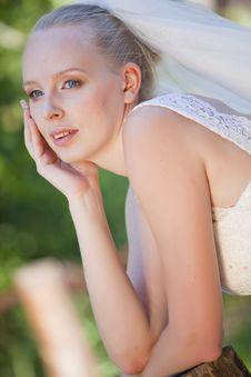 Free Portrait Of Bride Stock Photography - 15217222