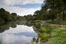 Free Central Park In Summer Stock Photography - 15217442