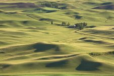 Free The Palouse Farmland. Royalty Free Stock Photography - 15217687