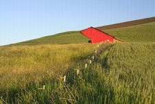 Free Leading To A Red Barn. Stock Image - 15217691
