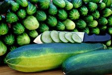 Free Oblong Marrow And Green Cucumber Stock Photos - 15219413