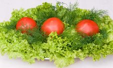 Free Vegetables Royalty Free Stock Photography - 15219597
