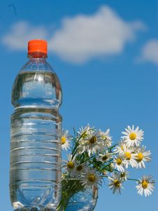 Free Bottle Plastic Royalty Free Stock Image - 15219626