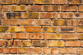 Free Brick Wall Royalty Free Stock Photo - 15222575