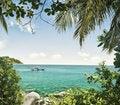 Free Tropic Stock Photos - 15222683