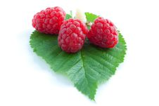 Free Raspberry With Leaves Royalty Free Stock Image - 15220916