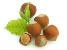 Free Group Of Wood Nuts Royalty Free Stock Photography - 15222257