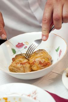 Free Stuffedcabbage Stock Photos - 15223453