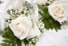 Free White Roses Stock Images - 15223744