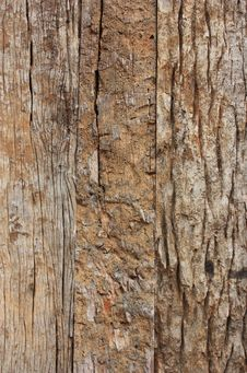 Free Wall Wood Royalty Free Stock Photos - 15224578