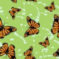 Free Butterfly Seamless Wallpapers Royalty Free Stock Image - 15233566