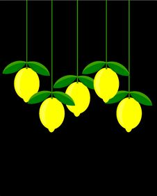 Free Lemon Picture Stock Photography - 15230672