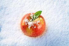 Free Apple In Snow Stock Image - 15230871