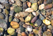 Free Rocks Under Ocean Water Stock Image - 15232971