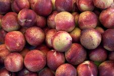 Free Nectarines Royalty Free Stock Photography - 15233887