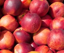 Free Ripe, Juicy Peach Red Stock Images - 15235134