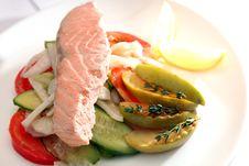 Free Dietetic Fish Dish Stock Photos - 15235323