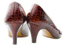 Female Shoes   Isolated Royalty Free Stock Photo
