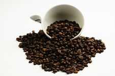 Free Cup Of Coffee Stock Image - 15238311