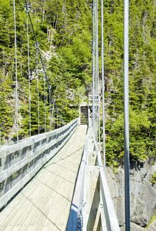 Free Suspension Bridge At La Manche Provincial Park Royalty Free Stock Photos - 15238618