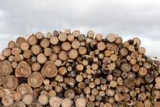 Free Firewood Put In Heap Stock Image - 15238931