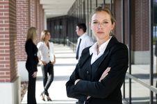 Free Attractive Businesswoman Stock Photos - 15239093