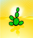 Free Desertification And Cactus Stock Images - 15240324