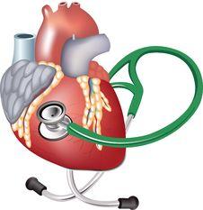 Free Heart Royalty Free Stock Image - 15241206